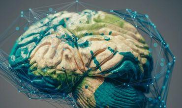 Внедрение чипов в мозг изменит человечество навсегда.