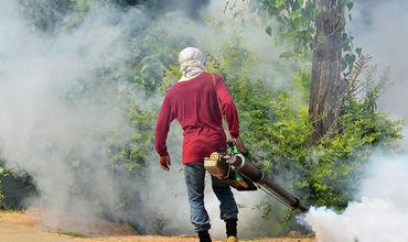 В Таиланде смертность от лихорадки денге выросла в 2,5 раза за два месяца.