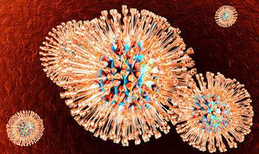 Американские биологи успешно завершили серию клинических испытаний.