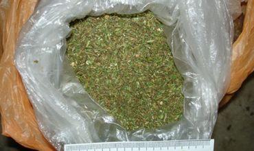 Милиционеры изъяли у бендерчанина 1,5 кг свежесобранной конопли.