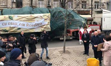 В молдавскую столицу привезли рождественскую елку из Румынии
