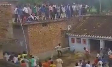 Дикий леопард загнал половину жителей деревни на крышу