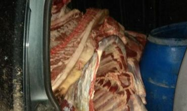 Мужчине грозит штраф в размере от 3 000 до 4 500 леев за незаконную перевозку мяса. Фото: tvrmoldova.md.