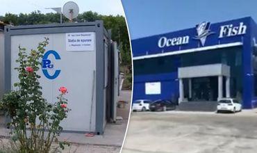 Фирму по переработке рыбы обвиняют из-за отходов в канализации Магдачешт