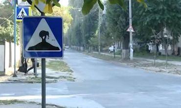 В Кишиневе на дорожный знак неизвестные наклеили изображение слона.