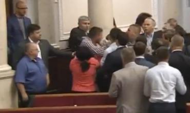 Депутаты Рады подрались на глазах у делегации из Нидерландов