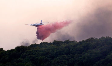 Самолет разбился во время тушения лесного пожара во Франции