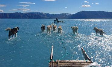 Арктику ожидает еще один рекордно теплый год.