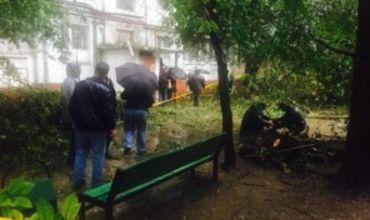 По делу гибели женщины от падения дерева задержан чиновник.