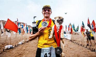 Бродячая собака пробежала с марафонцем 100 км по пустыне Гоби