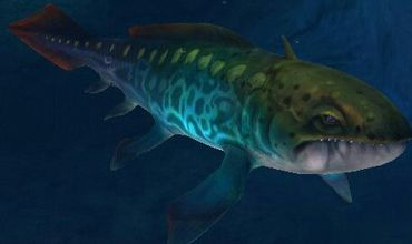 Ортакантус, вымерший род акул.