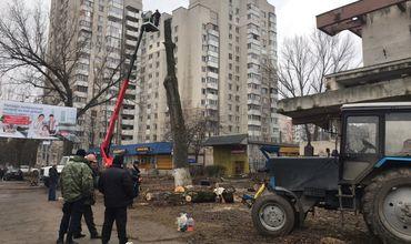 В Кишиневе возле канатной дороги вырубают деревья и работают геодезисты