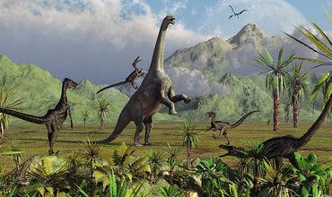 Ученые назвали другую, космическую теорию исчезновения древних рептилий.