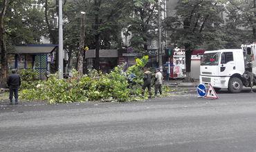 В Кишиневе вечером начали обрезать ветки деревьев.