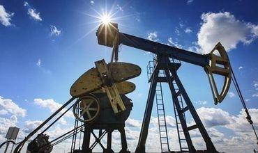 Запасов газа в Украине хватит на 22 года добычи.