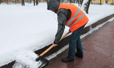 Власти призывают экономических агентов убирать снег.
