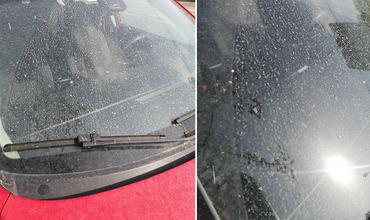 В среду утром люди обнаружили свои автомобили покрытыми желтоватым слоем пыли.