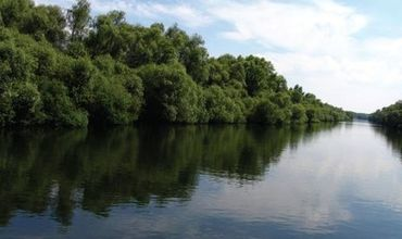 Молдаванин был пойман при незаконном пересечении границы через реку Прут.