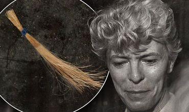 Волосы аукционный дом получил от бывшей сотрудницы Музея мадам Тюссо.