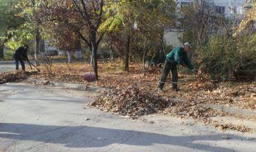 Жителей Кишинева и экономических агентов призывают к чистоте