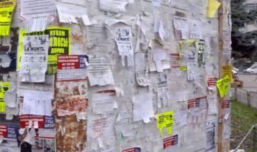 Власти предлагают решить проблему с незаконной рекламой, установив сетки вокруг столбов.
