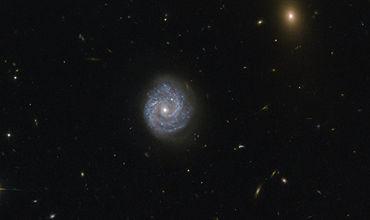 """""""Хаббл"""" получил фотографии черной дыры, нарушающей законы физики."""
