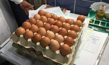 Десятки просроченных яиц обнаружили в детском саду Кишинева