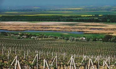 Молдавское сельское хозяйство стало более устойчивым к стихийным бедствиям.