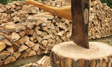 Лесные хозяйства заготовят около 145 000 кубометров дров.