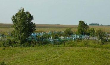 Дети устроили погром на сельском кладбище в Рыбнице