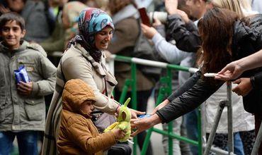 Швейцария может стать новой транзитной страной для беженцев