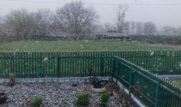 В северных районах страны идет снег