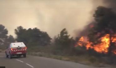 Лесные пожары охватили Францию и Испанию