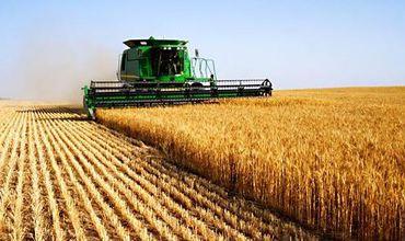 Срок аренды сельскохозяйственных земель не изменится.