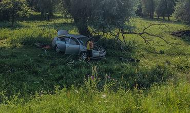 Вблизи Новых Анен легковой автомобиль слетел с трассы