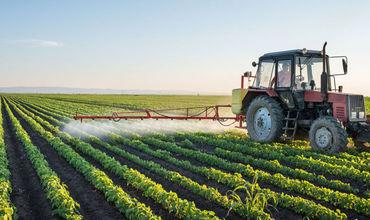 Subvenţii în avans. Proiectul vizează femeile şi tinerii agricultori