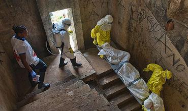 ВОЗ сообщила о возможных 29 случаях заражения лихорадкой Эбола в ДРК.