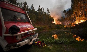Португалия обратилась к Евросоюзу за помощью в тушении лесных пожаров.