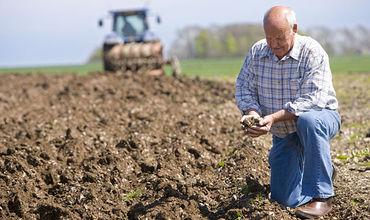 В сельском хозяйстве регистрируется существенное снижение производства.