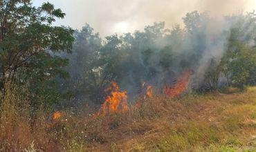 Угроза возгораний особенно велика в центральных и южных районах.