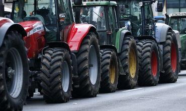 В Бричанском районе потери многих сельхозпроизводителей составили 80-90% урожая фруктов.
