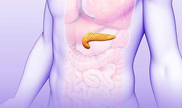 Пересадка клеток дает возможность отказаться от инъекций инсулина.