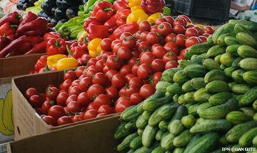 Цена помидоров, огурцов, сладких перцев и баклажанов начинается от 5 леев.
