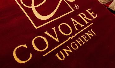 Covoare Ungheni является акционерным обществом, основанным в 1993 году.