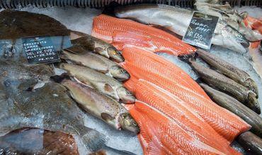 Украина экспортировала в первом квартале 119 тонн мороженой рыбы на $321 тыс.