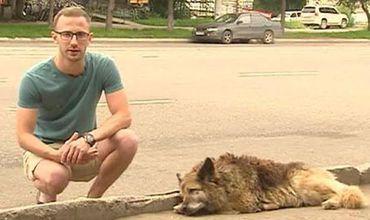 Собачья преданность: В России пес побил рекорд Хатико.