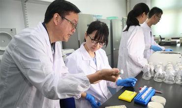 Китайские ученые исправили дефектные яйцеклетки животных.