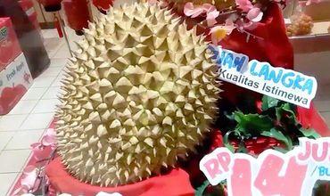 Цена фрукта — $1000, что втрое превышает среднюю зарплату индонезийца.