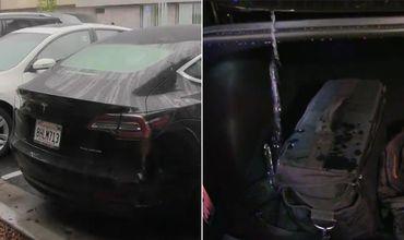 Хозяин Tesla Model 3 продемонстрировал одно существенное упущение в дизайне автомобиля.