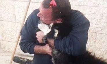 Потерявшаяся вИзраиле собака cмогла отыскать своего хозяина благодаря своему умению петь илюбви кпопулярной детской песне.